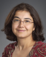 Visit Profile of Zeynep Hansen