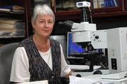 Visit Profile of Hildegard M. Schuller