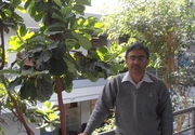 Visit Profile of Associate Professor Rajeev Sharma
