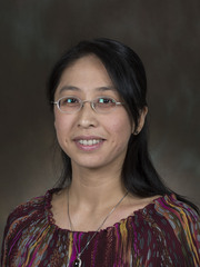 Visit Profile of Hsing-Yi Tsai, Ph.D.